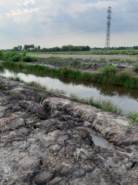 Đất Nhơn Trạch bán 350 ngàn 1m2 4000 m2 81.41 - 3