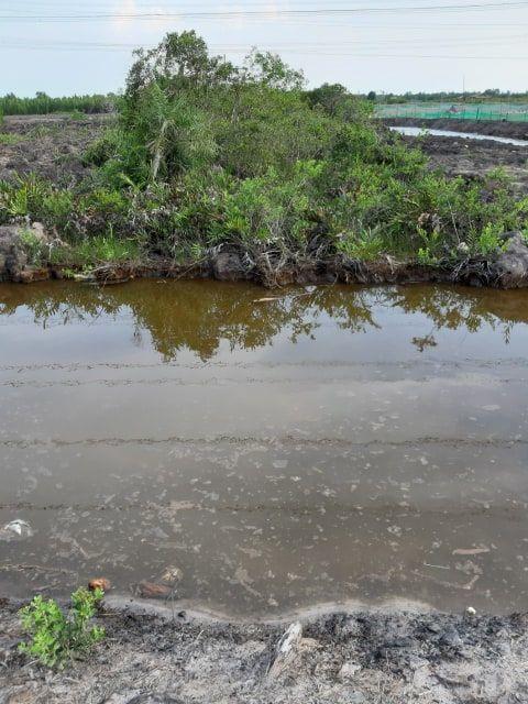 Đất Nhơn Trạch bán 350 ngàn 1m2 4000 m2 81.41 - 4