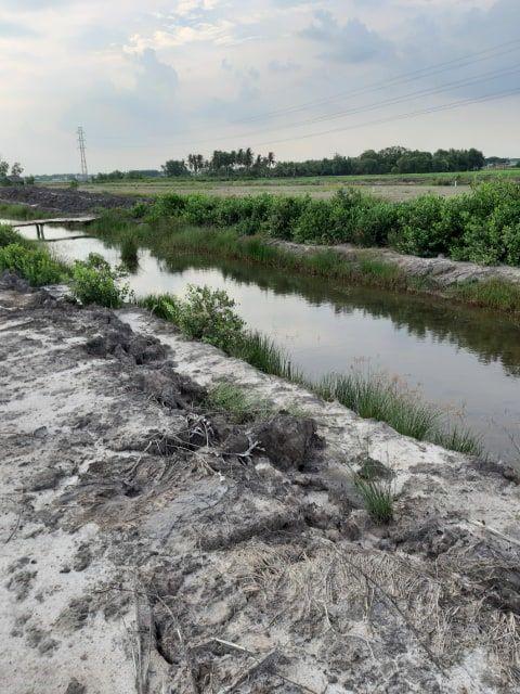 Đất Nhơn Trạch bán 350 ngàn 1m2 4000 m2 81.41